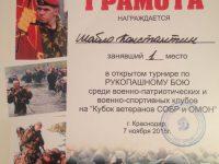 город_2015 (2)